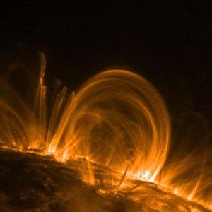 coronal loops of the sun